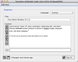The Text Editor Window